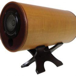 エムズシステムのMS1001やRASKのSB-501というスピーカーがおもしろそうだ 音場を重視するスピーカーたち