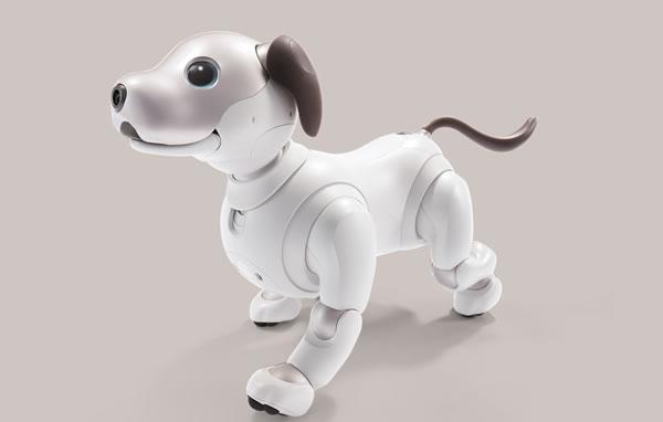 ソニーの新型アイボ 今度は犬に少し近づいた