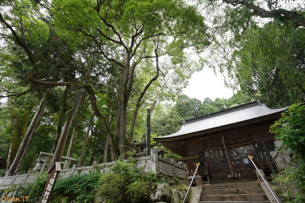 朝来市の赤淵神社にて、1635GMは神社を撮るために導入した